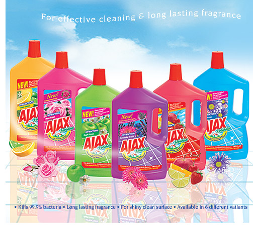Windex® Multi-Surface Antibacterial - Get a streak-free shine